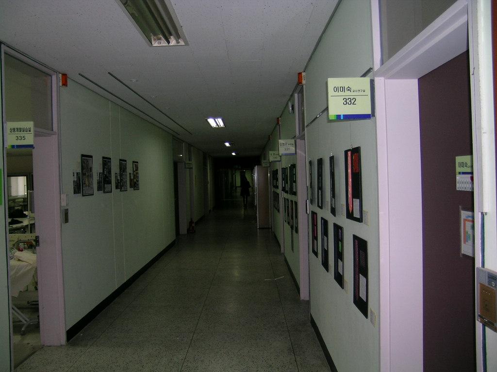 DSCN5124.JPG